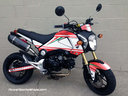 Minimonster - Honda MSX125+Ducati Monster